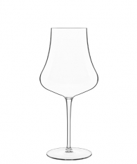 Merlot - Red Wines
